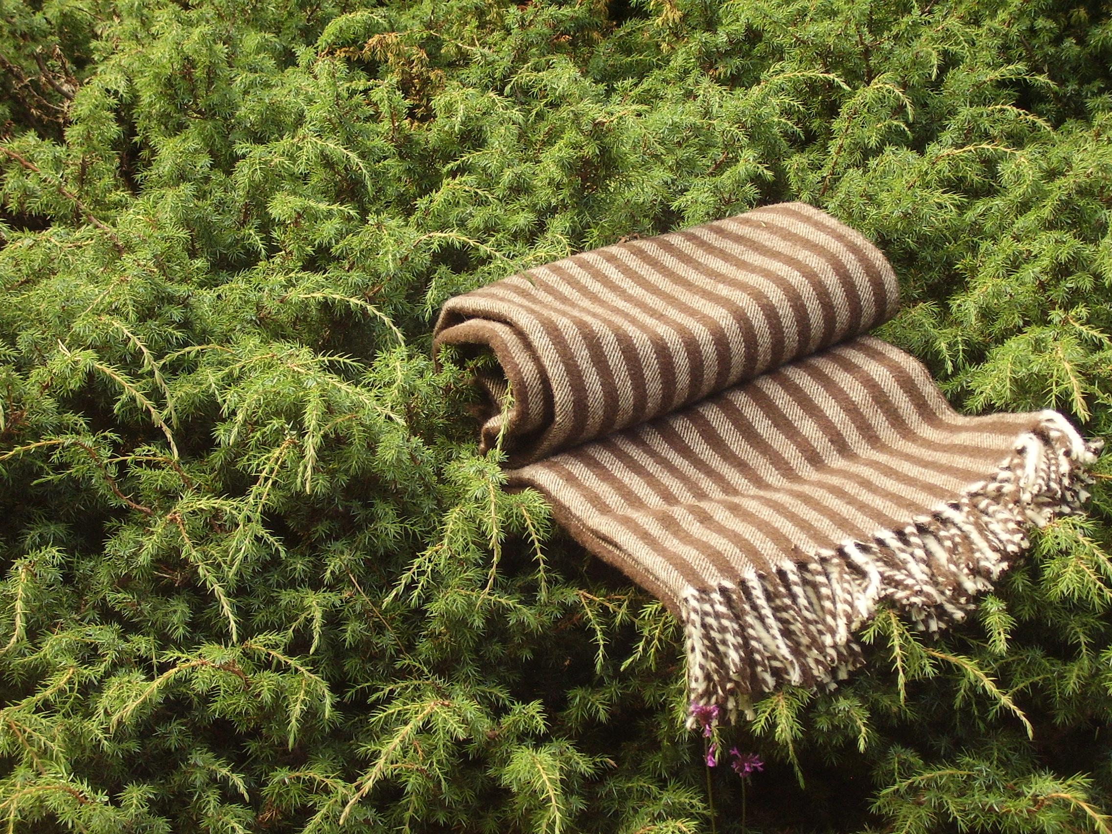 Manta de lana pallaresa artesan a en mantas de lana for Mantas de lana de colores