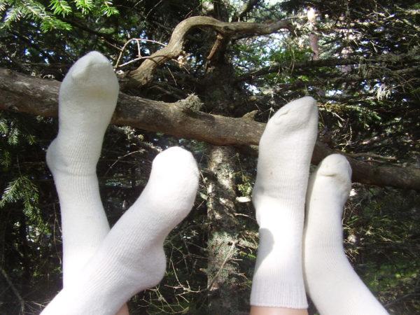 calcetines blancos de lana sobre arbol